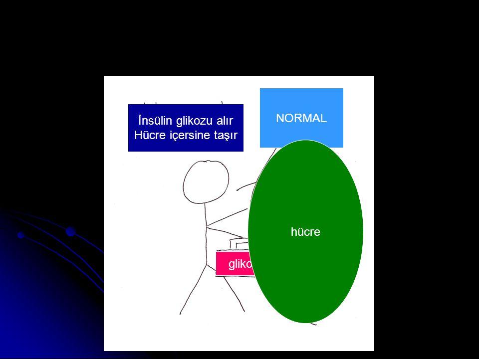 NORMAL İnsülin glikozu alır Hücre içersine taşır hücre glikoz