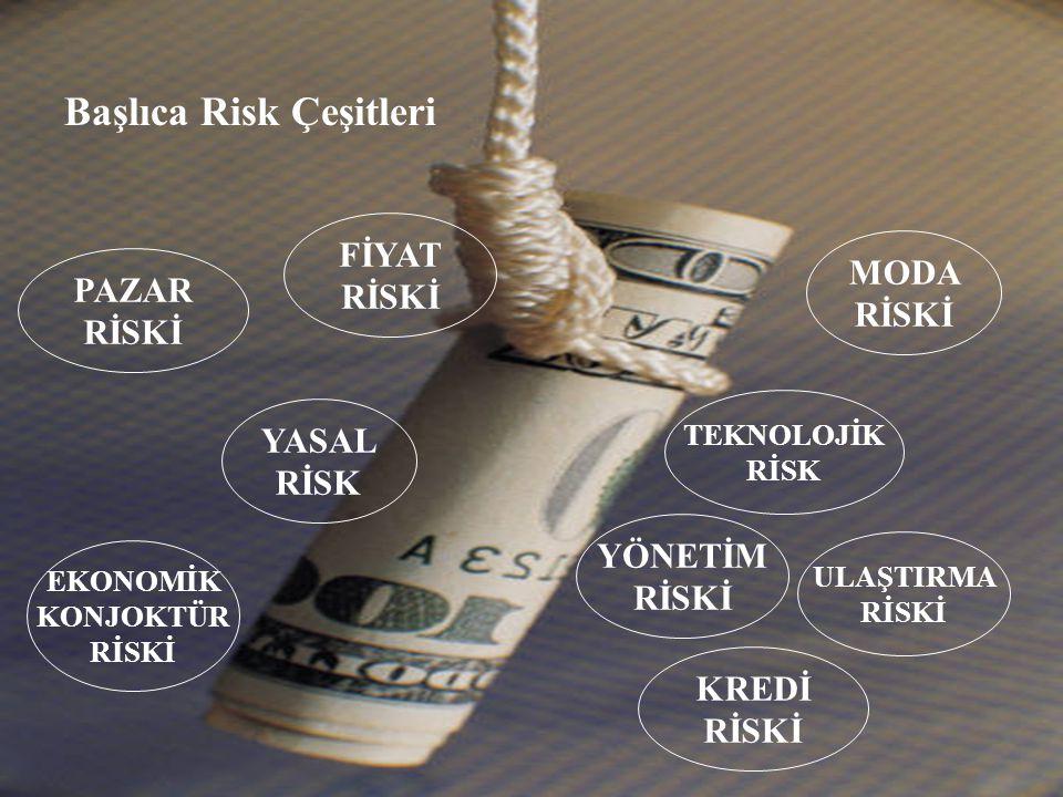 Başlıca Risk Çeşitleri