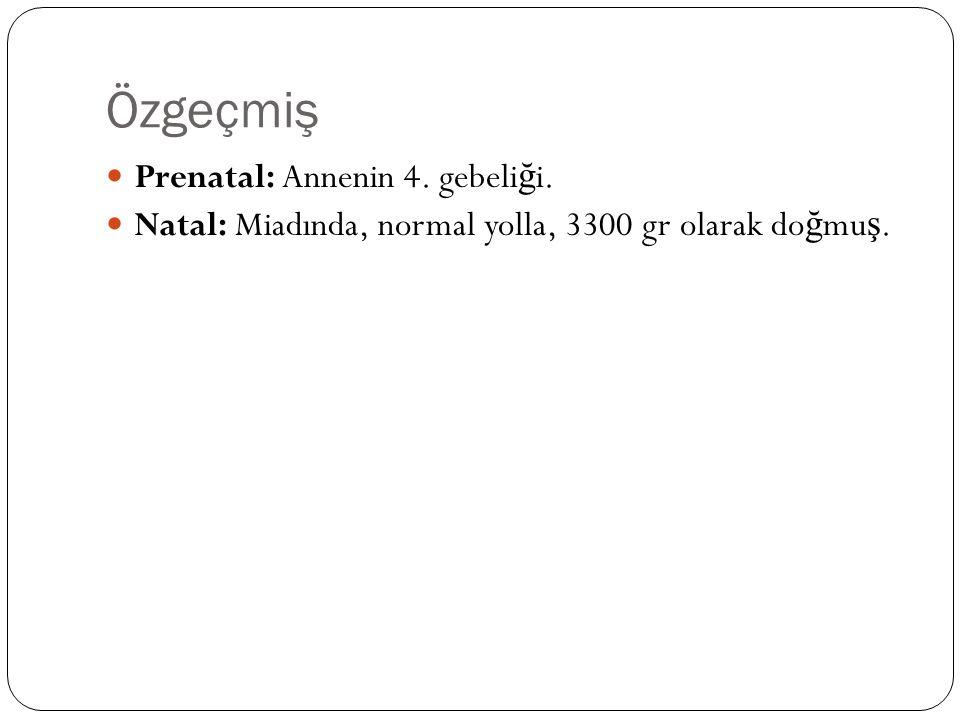 Özgeçmiş Prenatal: Annenin 4. gebeliği.