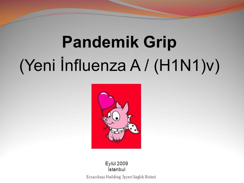 Pandemik Grip (Yeni İnfluenza A / (H1N1)v)