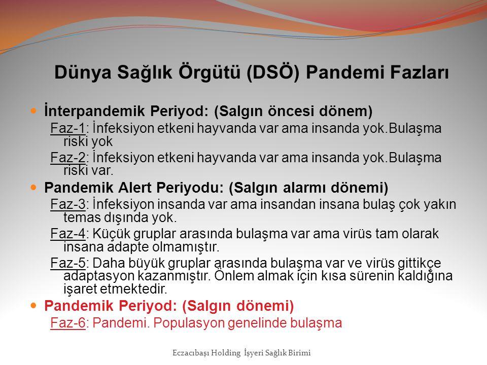 Dünya Sağlık Örgütü (DSÖ) Pandemi Fazları