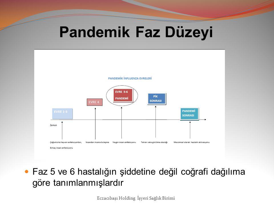Pandemik Faz Düzeyi Faz 5 ve 6 hastalığın şiddetine değil coğrafi dağılıma göre tanımlanmışlardır.