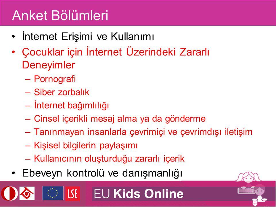 Anket Bölümleri İnternet Erişimi ve Kullanımı