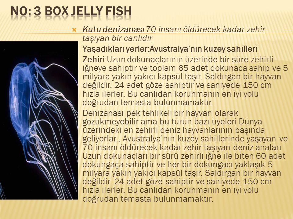 No: 3 Box Jelly Fish Kutu denizanası 70 insanı öldürecek kadar zehir taşıyan bir canlıdır. Yaşadıkları yerler:Avustralya'nın kuzey sahilleri.