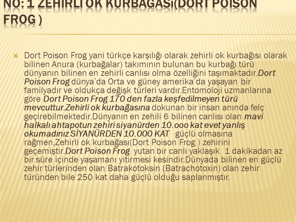 No: 1 Zehirli ok kurbağası(Dort Poison Frog )
