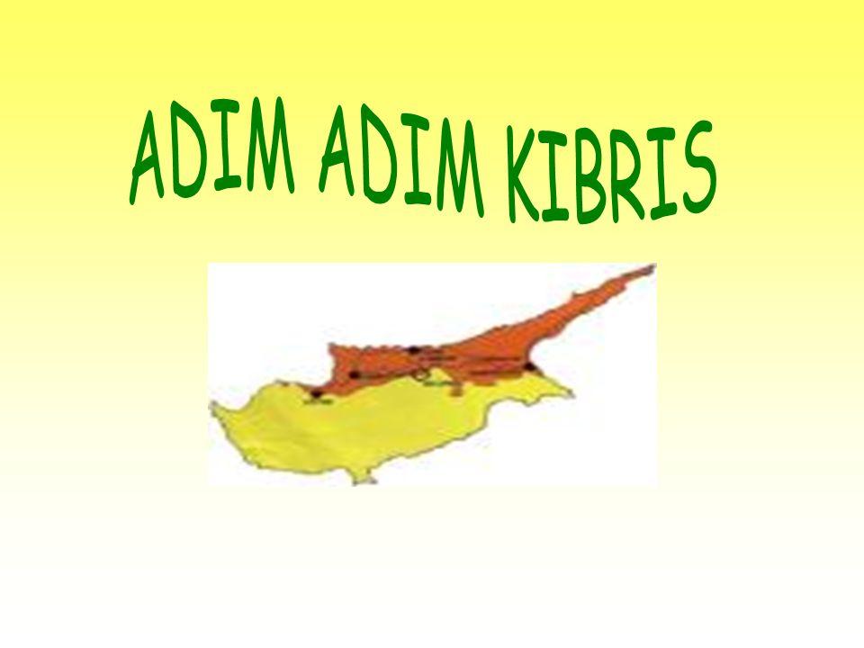 ADIM ADIM KIBRIS