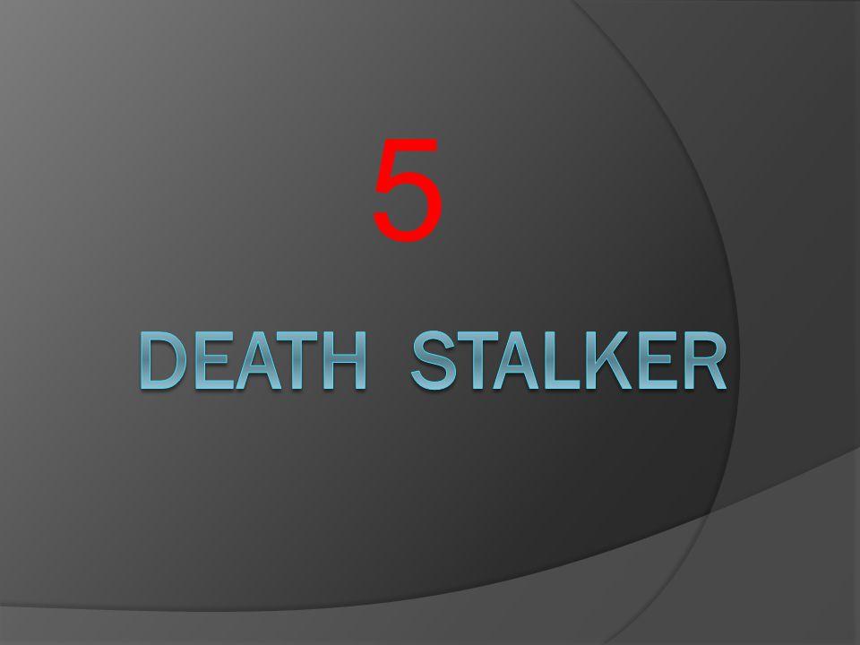 5 Death stalker