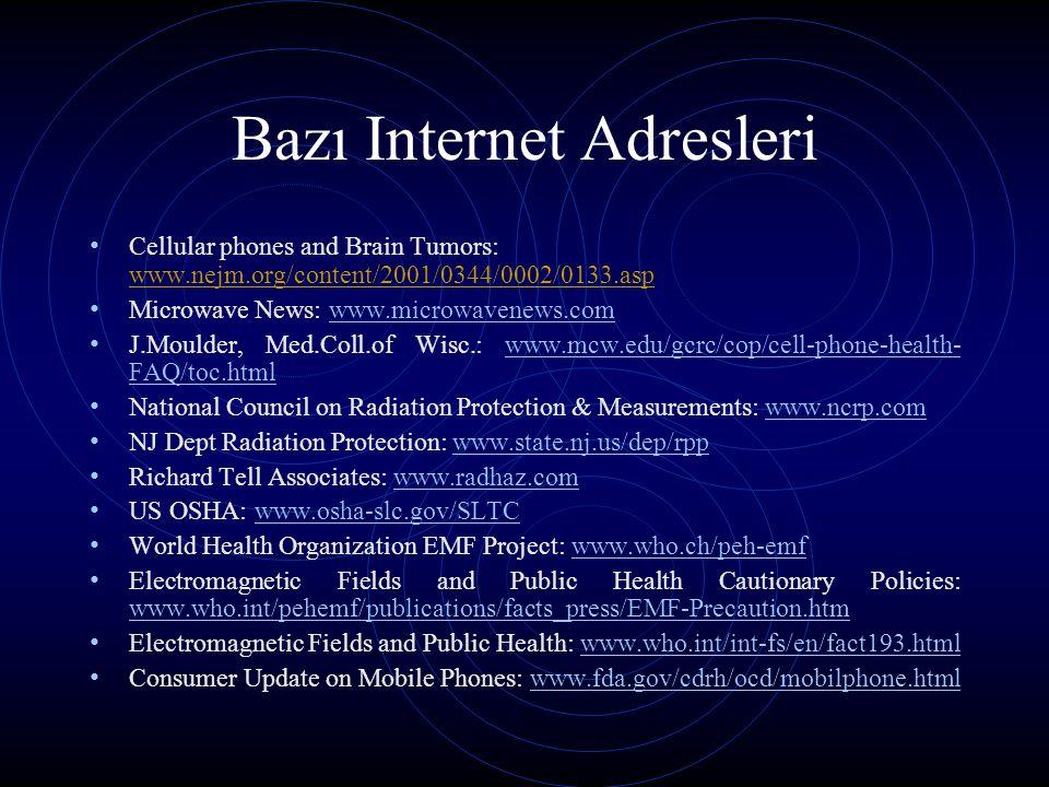 Bazı Internet Adresleri