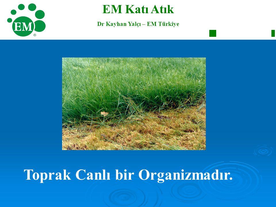 Dr Kayhan Yalçı – EM Türkiye