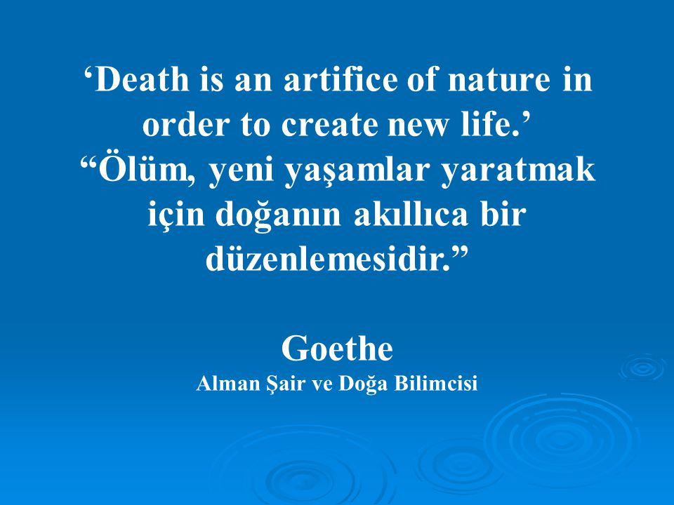 'Death is an artifice of nature in order to create new life.'