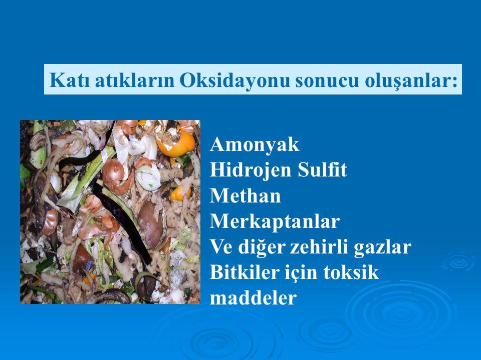 Katı atıkların Oksidayonu sonucu oluşanlar: