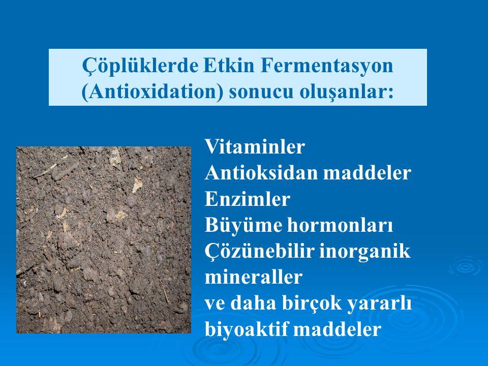 Çöplüklerde Etkin Fermentasyon (Antioxidation) sonucu oluşanlar:
