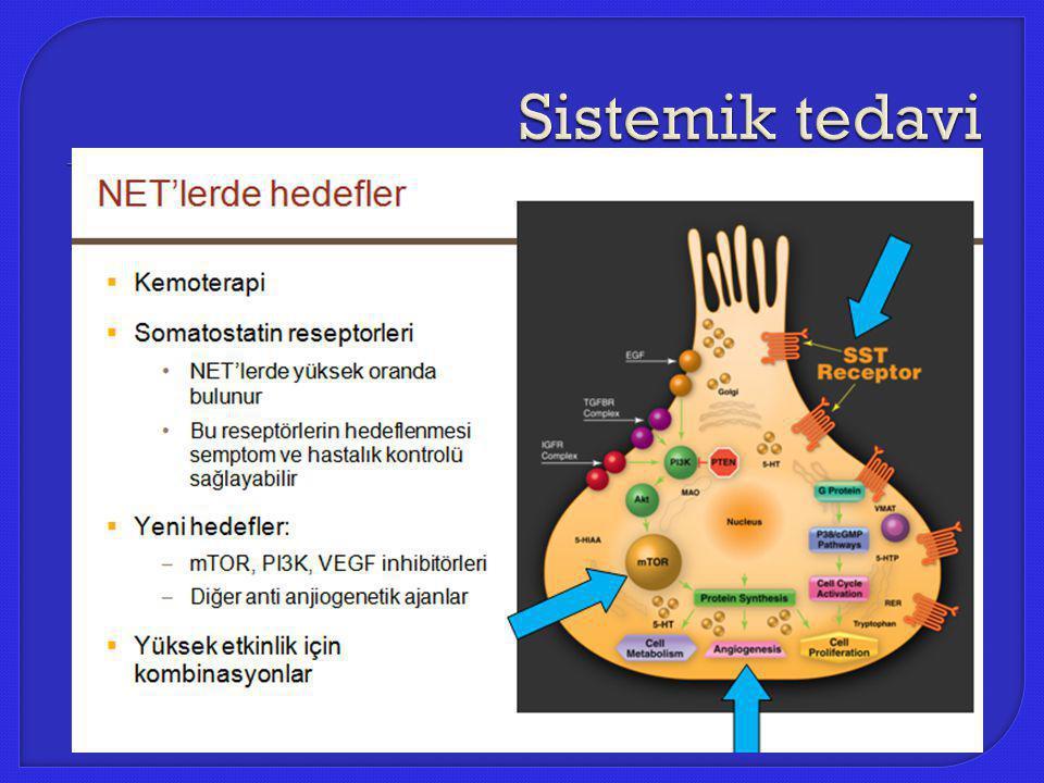 Sistemik tedavi