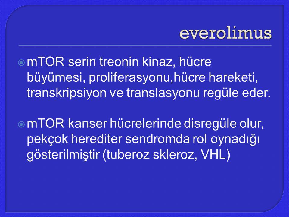 everolimus mTOR serin treonin kinaz, hücre büyümesi, proliferasyonu,hücre hareketi, transkripsiyon ve translasyonu regüle eder.