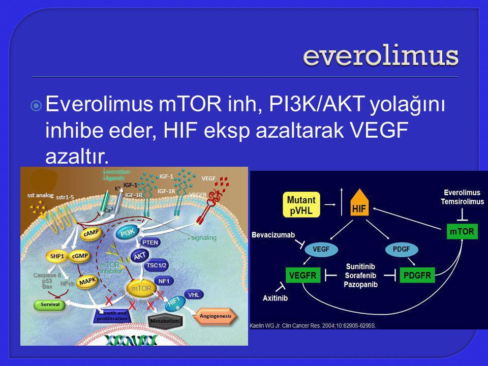 everolimus Everolimus mTOR inh, PI3K/AKT yolağını inhibe eder, HIF eksp azaltarak VEGF azaltır.