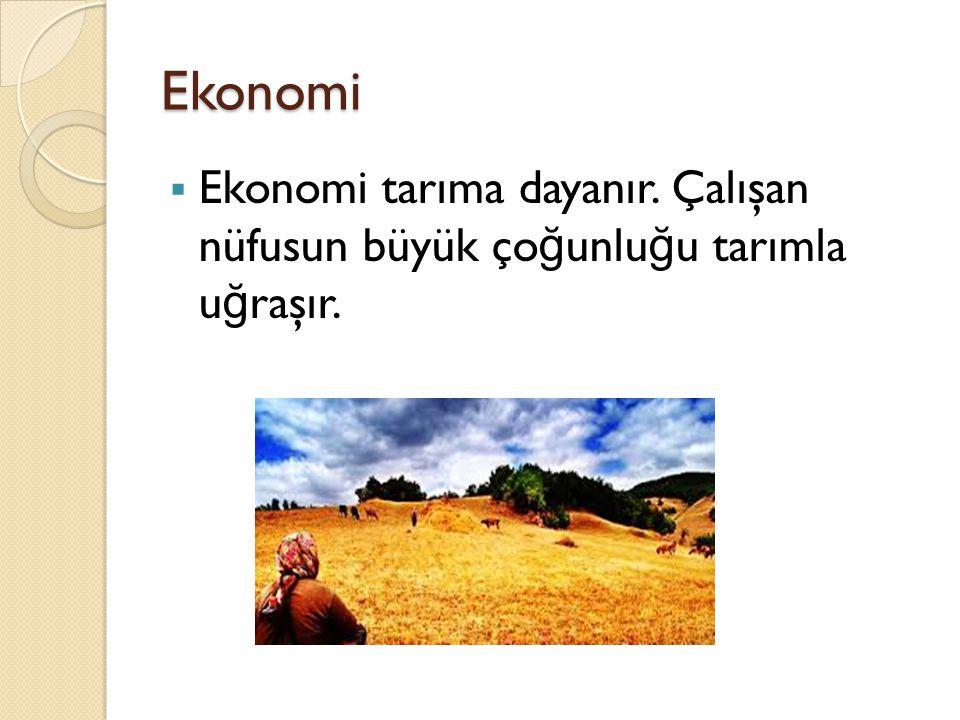 Ekonomi Ekonomi tarıma dayanır. Çalışan nüfusun büyük çoğunluğu tarımla uğraşır.