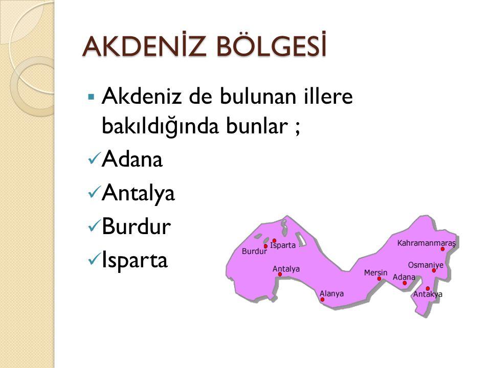 AKDENİZ BÖLGESİ Akdeniz de bulunan illere bakıldığında bunlar ; Adana