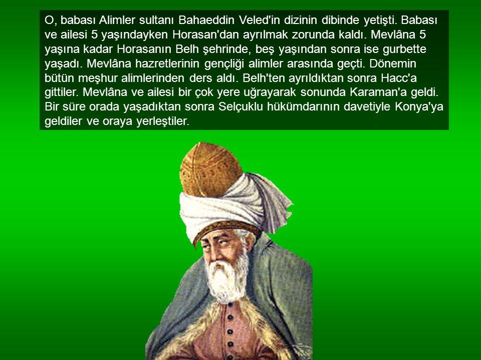 O, babası Alimler sultanı Bahaeddin Veled in dizinin dibinde yetişti