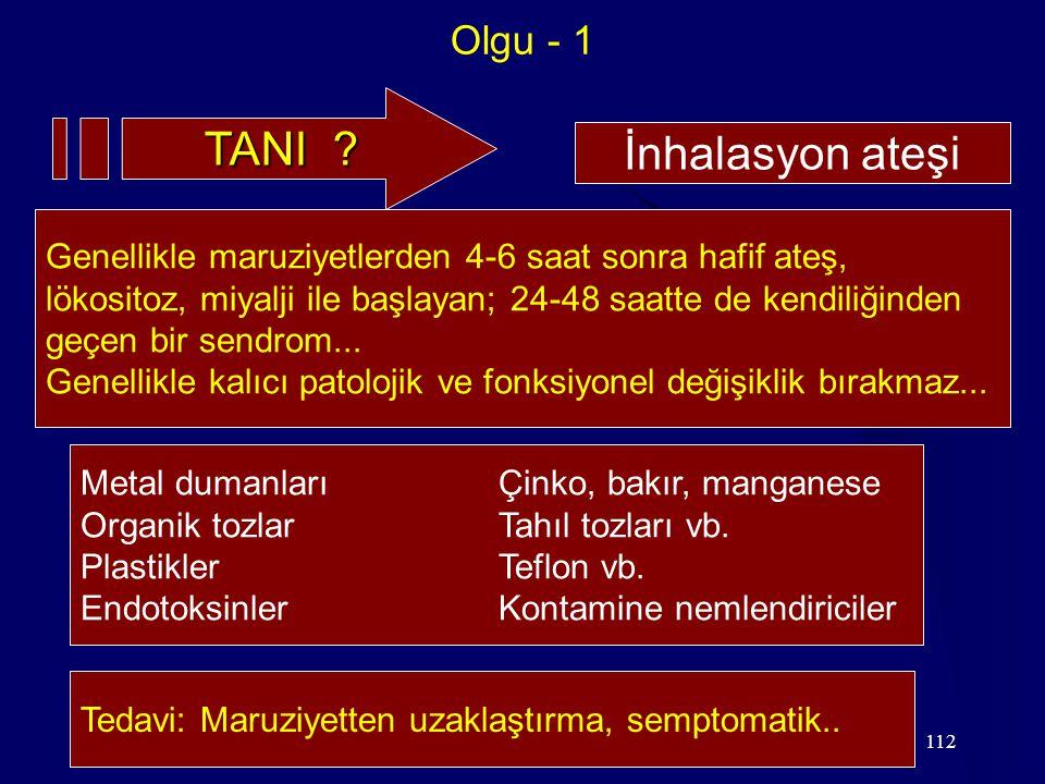 TANI İnhalasyon ateşi Olgu - 1