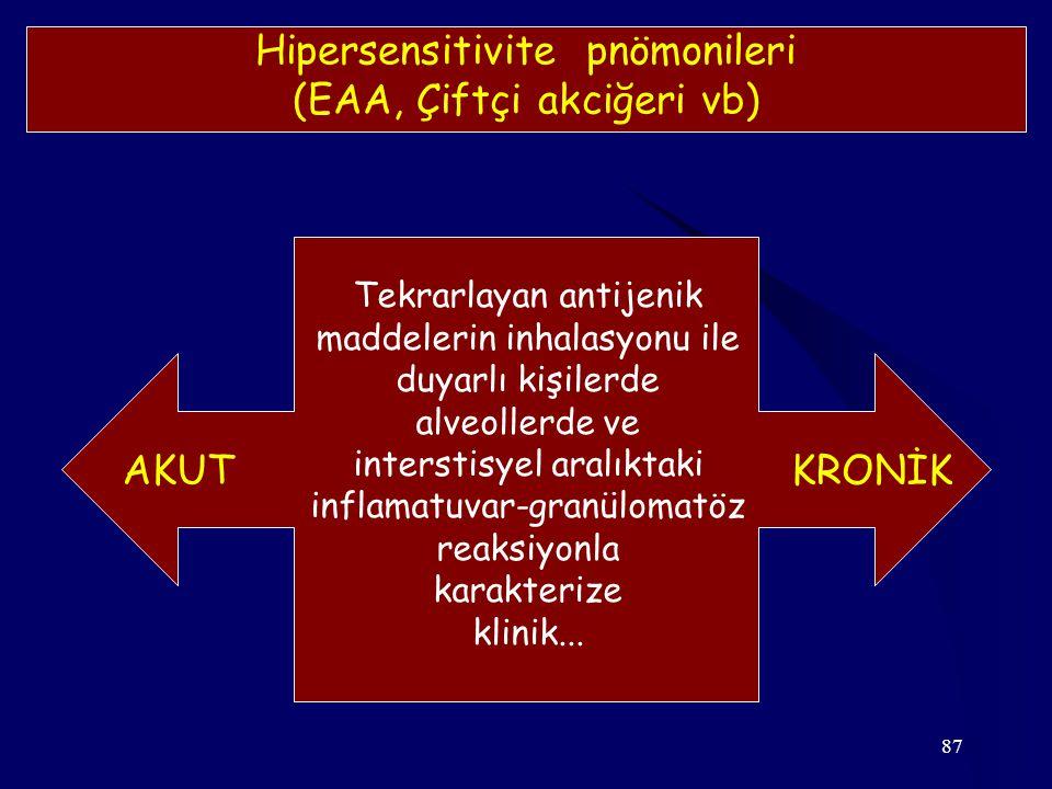 Hipersensitivite pnömonileri (EAA, Çiftçi akciğeri vb)