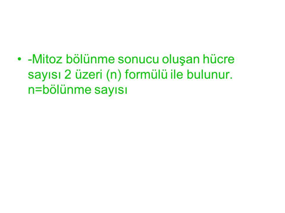 -Mitoz bölünme sonucu oluşan hücre sayısı 2 üzeri (n) formülü ile bulunur. n=bölünme sayısı