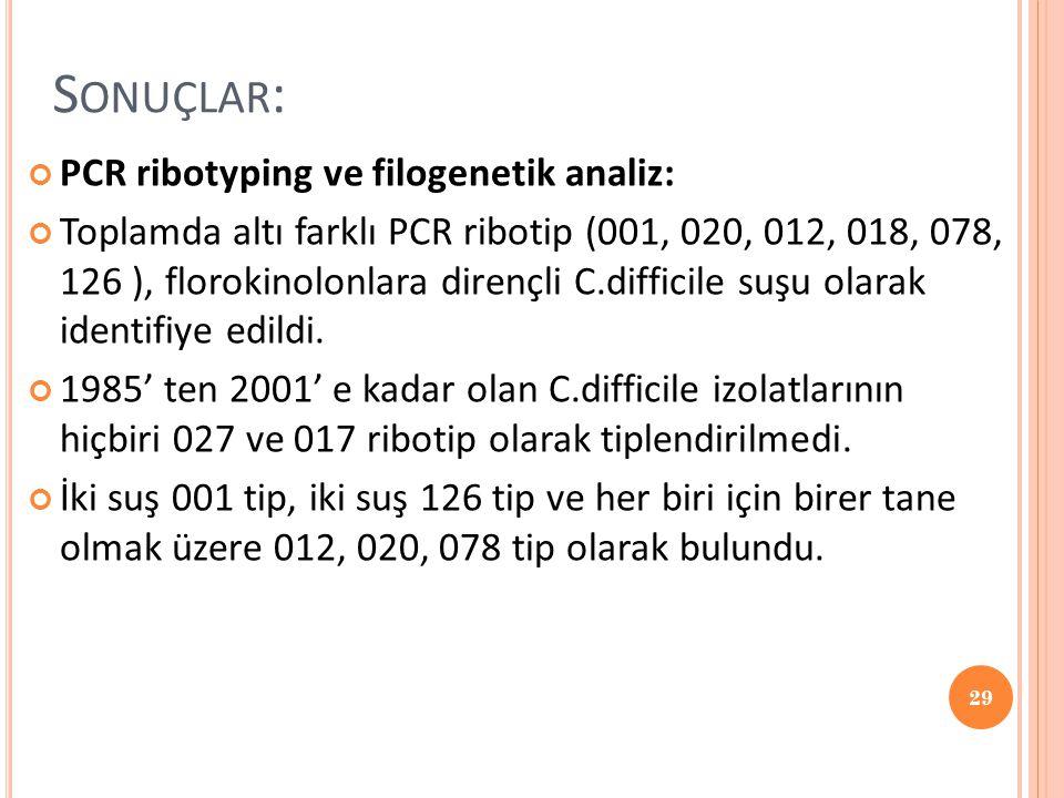 Sonuçlar: PCR ribotyping ve filogenetik analiz: