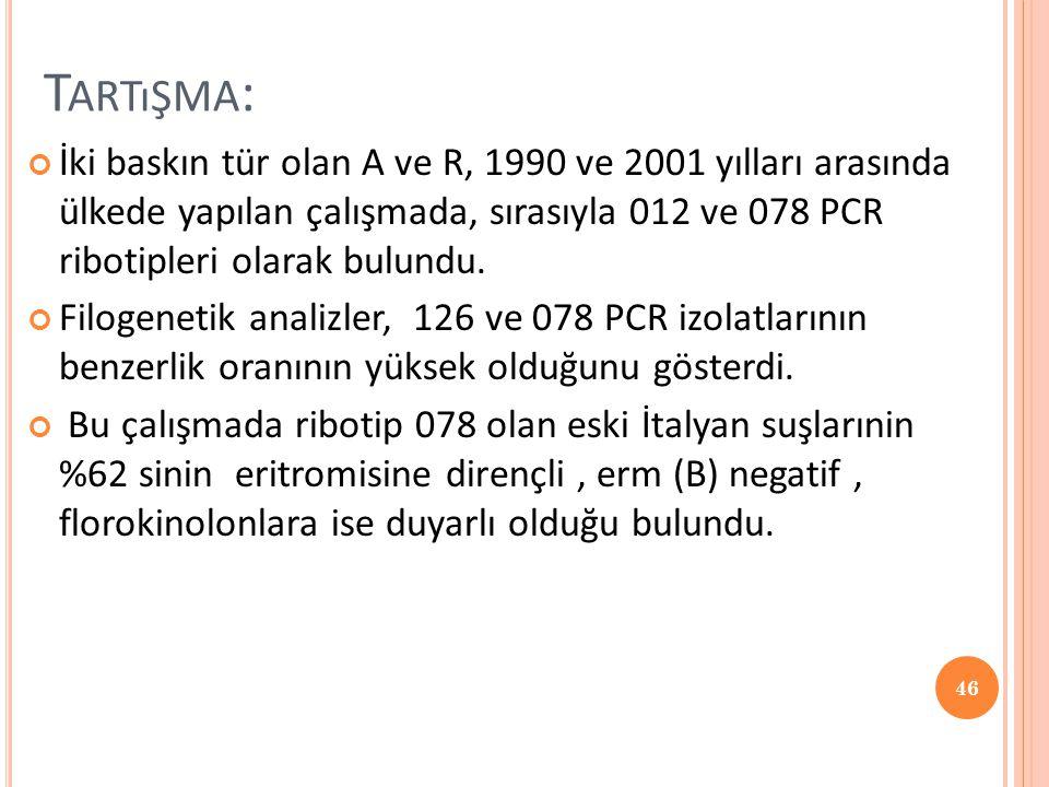 Tartışma: İki baskın tür olan A ve R, 1990 ve 2001 yılları arasında ülkede yapılan çalışmada, sırasıyla 012 ve 078 PCR ribotipleri olarak bulundu.