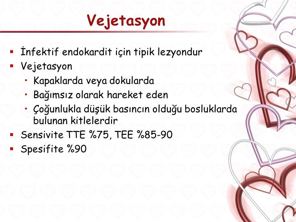 Vejetasyon İnfektif endokardit için tipik lezyondur Vejetasyon
