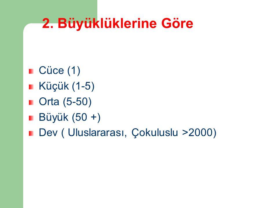 2. Büyüklüklerine Göre Cüce (1) Küçük (1-5) Orta (5-50) Büyük (50 +)