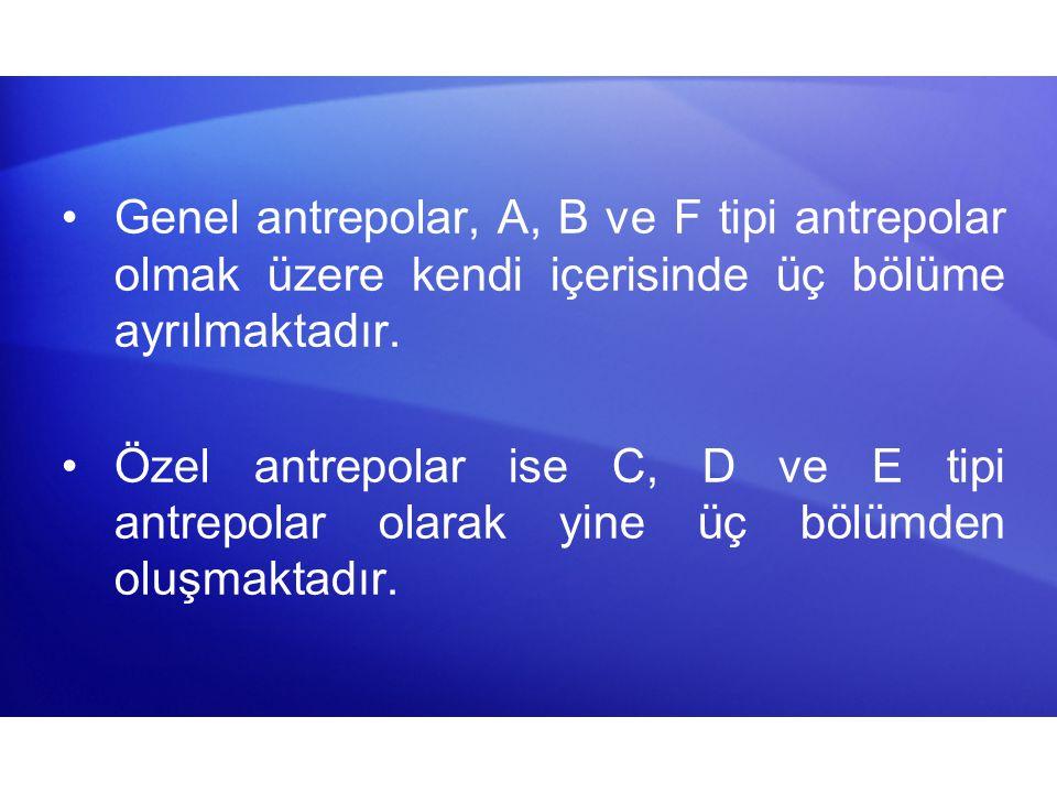 Genel antrepolar, A, B ve F tipi antrepolar olmak üzere kendi içerisinde üç bölüme ayrılmaktadır.