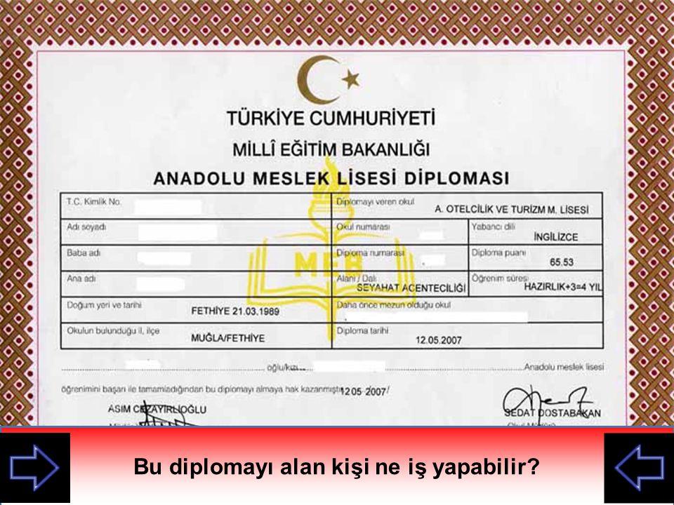 Bu diplomayı alan kişi ne iş yapabilir Bu diploma nerden alınmış