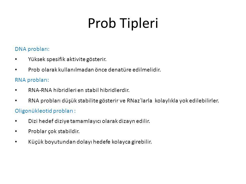 Prob Tipleri DNA probları: Yüksek spesifik aktivite gösterir.