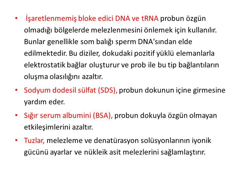 İşaretlenmemiş bloke edici DNA ve tRNA probun özgün olmadığı bölgelerde melezlenmesini önlemek için kullanılır. Bunlar genellikle som balığı sperm DNA sından elde edilmektedir. Bu diziler, dokudaki pozitif yüklü elemanlarla elektrostatik bağlar oluşturur ve prob ile bu tip bağlantıların oluşma olasılığını azaltır.