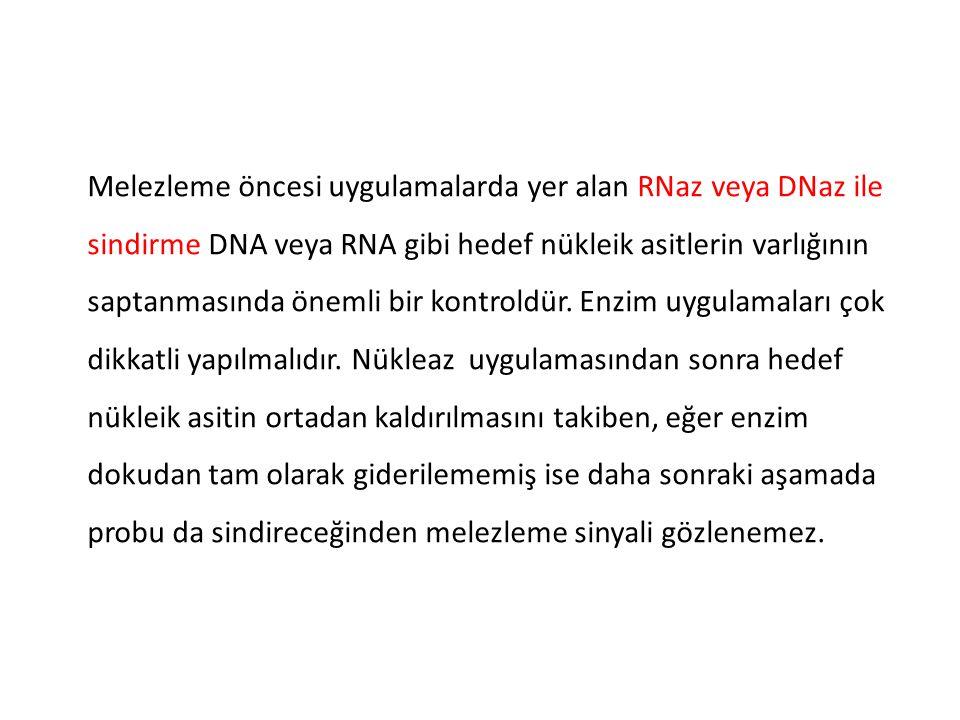 Melezleme öncesi uygulamalarda yer alan RNaz veya DNaz ile sindirme DNA veya RNA gibi hedef nükleik asitlerin varlığının saptanmasında önemli bir kontroldür.