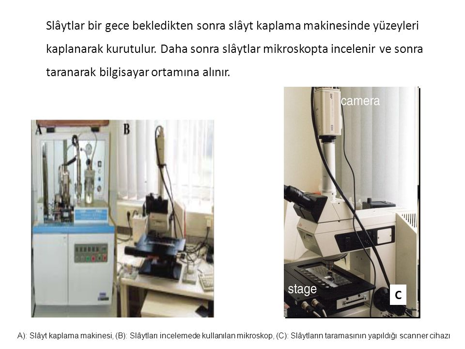Slâytlar bir gece bekledikten sonra slâyt kaplama makinesinde yüzeyleri kaplanarak kurutulur. Daha sonra slâytlar mikroskopta incelenir ve sonra taranarak bilgisayar ortamına alınır.