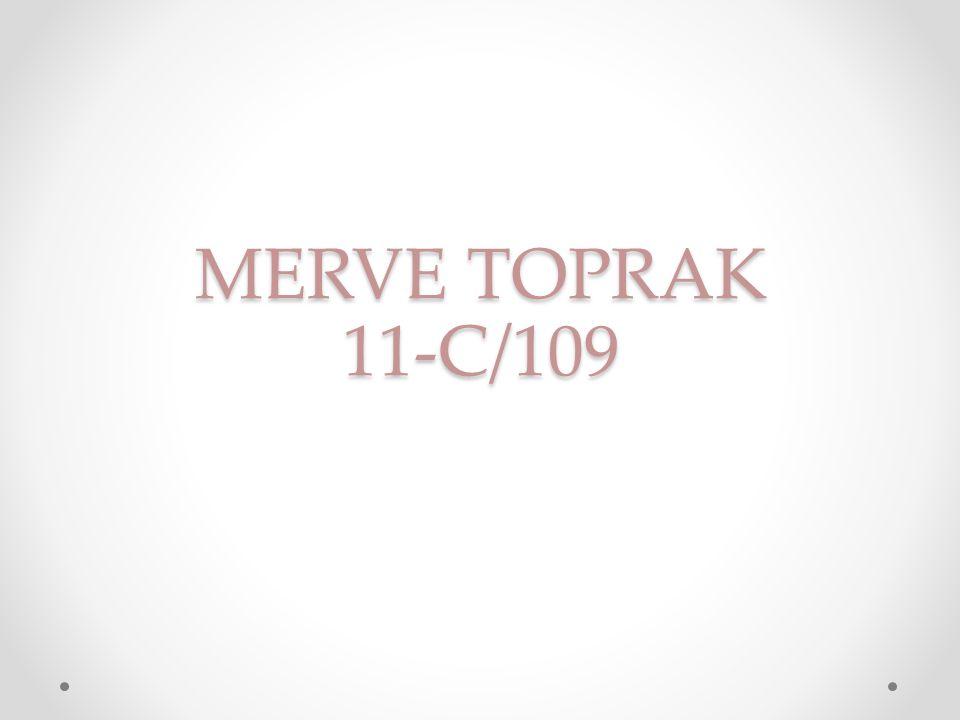 MERVE TOPRAK 11-C/109