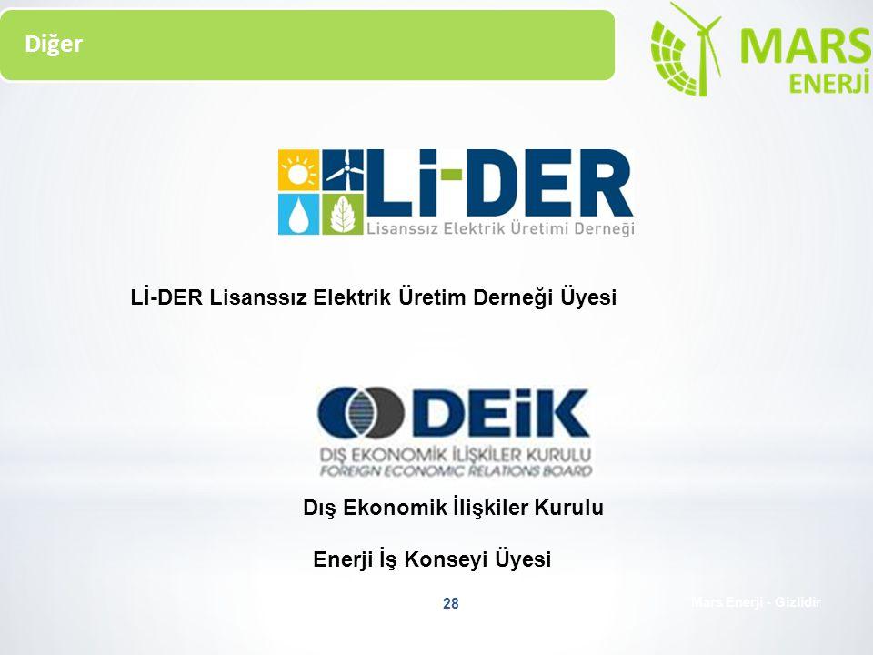 Enerji İş Konseyi Üyesi