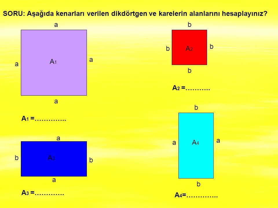 SORU: Aşağıda kenarları verilen dikdörtgen ve karelerin alanlarını hesaplayınız
