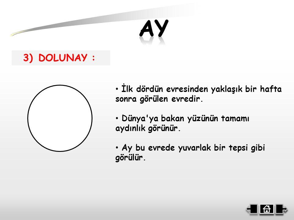 AY 3) DOLUNAY : İlk dördün evresinden yaklaşık bir hafta sonra görülen evredir. Dünya ya bakan yüzünün tamamı aydınlık görünür.