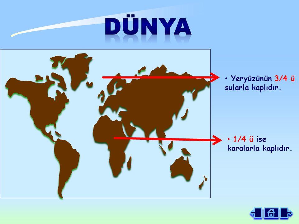 DÜNYA Yeryüzünün 3/4 ü sularla kaplıdır. 1/4 ü ise karalarla kaplıdır.