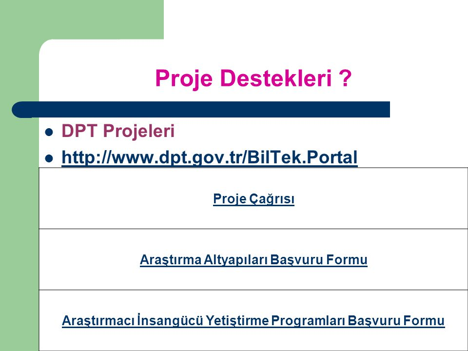 Proje Destekleri DPT Projeleri http://www.dpt.gov.tr/BilTek.Portal
