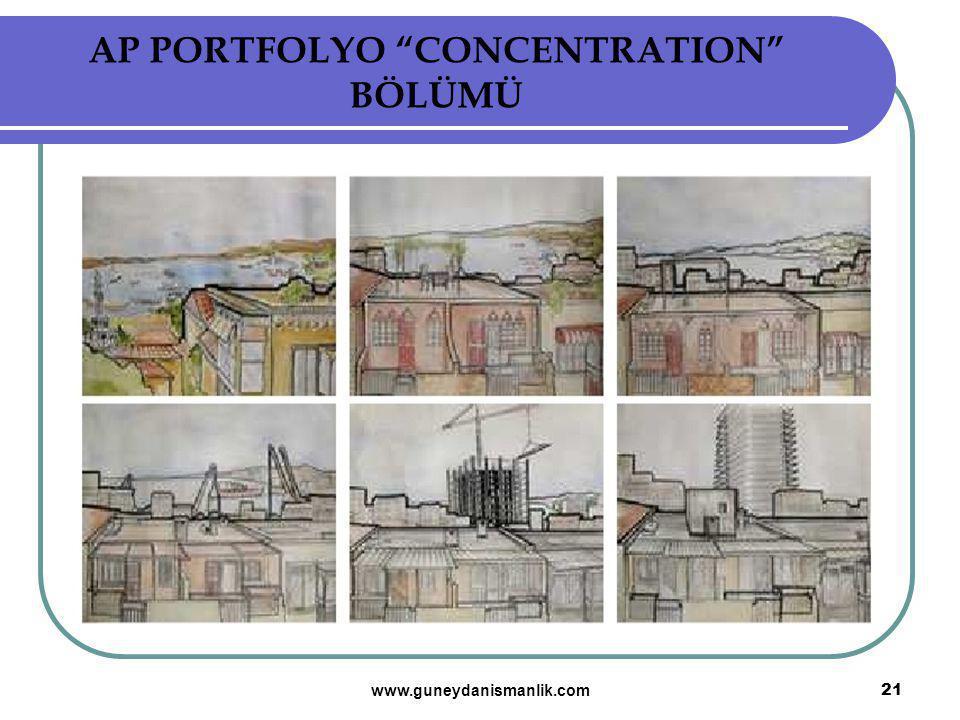 AP PORTFOLYO CONCENTRATION BÖLÜMÜ