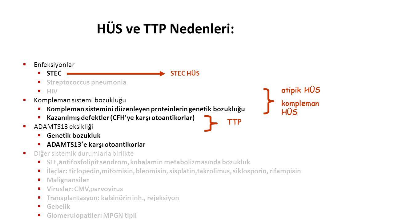 HÜS ve TTP Nedenleri: Enfeksiyonlar STEC STEC HÜS