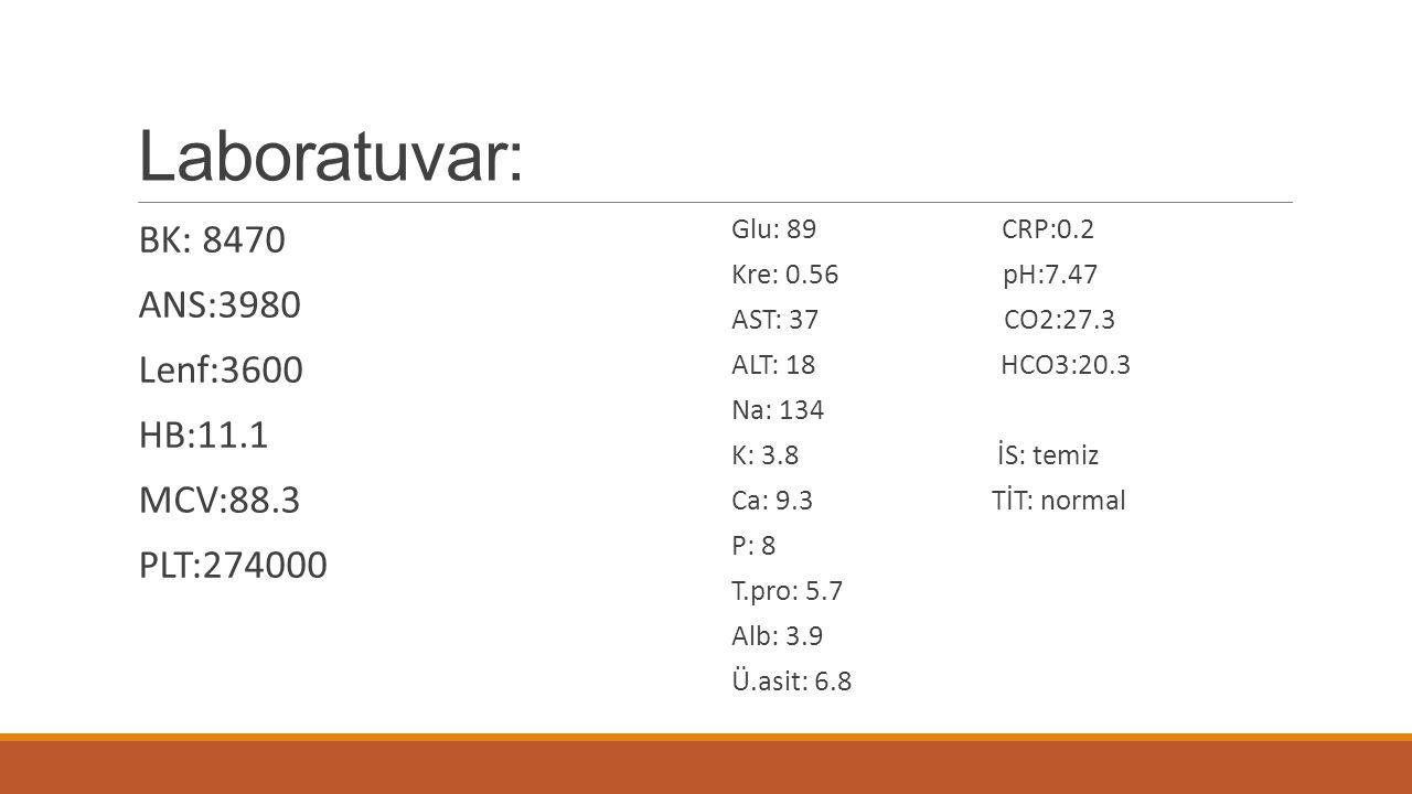 Laboratuvar: BK: 8470 ANS:3980 Lenf:3600 HB:11.1 MCV:88.3 PLT:274000