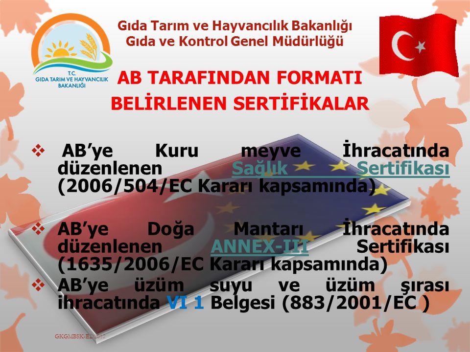 AB TARAFINDAN FORMATI BELİRLENEN SERTİFİKALAR