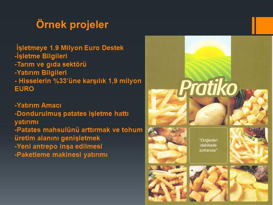 Örnek projeler İşletmeye 1.9 Milyon Euro Destek