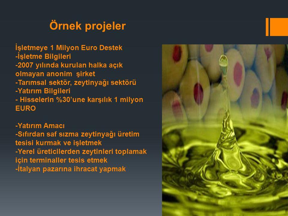 Örnek projeler İşletmeye 1 Milyon Euro Destek -İşletme Bilgileri