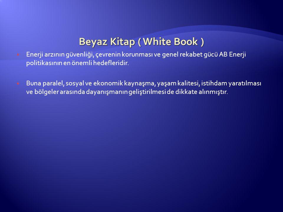 Beyaz Kitap ( White Book )
