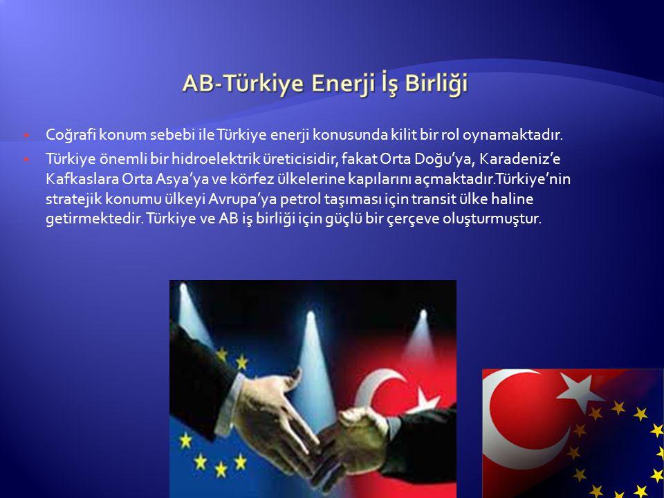 AB-Türkiye Enerji İş Birliği