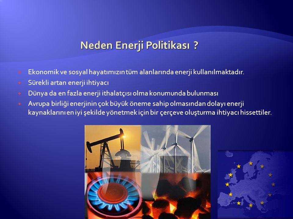 Neden Enerji Politikası